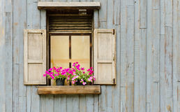Okno z kwiatu garnkiem zdjęcia stock