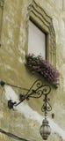 Okno z różowymi kwiatami Zdjęcia Stock