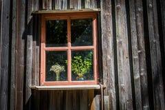 Okno z starą ceramiczną wazą i wildflowers fotografia stock