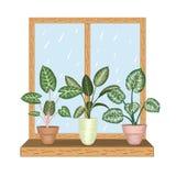 Okno z tropikalnymi houseplants w garnkach royalty ilustracja
