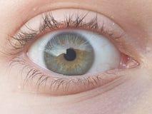 Oko obraz stock