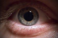 Oko: Błękit, zieleń/ Obrazy Royalty Free