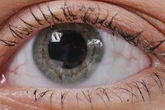 Oko makro- piękne niebieskie oko kobiety young Makro- wizerunek ludzki oko Fotografia Royalty Free