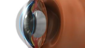 Oko obiektyw royalty ilustracja