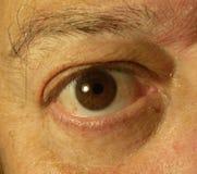 Oko ogląda ciebie zdjęcia stock