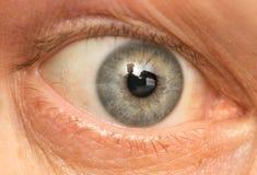 Oko samiec Makro- Zdjęcia Royalty Free
