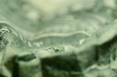 Oko skrzętność, od wielkiej foki na Amerykańskim dolarowym rachunku, szpieguje obrazy royalty free