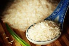 Okokta ris Fotografering för Bildbyråer