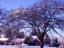okolica śnieg colorado Zdjęcia Royalty Free