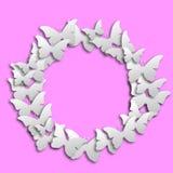 Okrąża białego motyla papier na różowym pastelowym tle fotografia stock