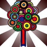 okrąża ulistnienia kolorowego drzewa Zdjęcie Stock