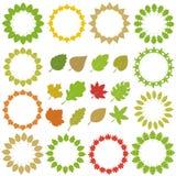 Okrąg liść, liść kolekcja + ilustracja wektor