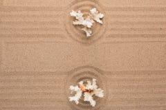 Okrąg robić piasek z koralem Z pustą przestrzenią fotografia royalty free