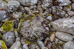 Okrąg skały zakrywać z barwionymi mech Zdjęcie Stock
