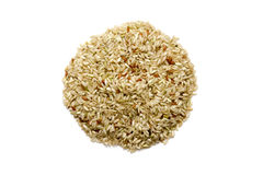 Okrąg zbożowi ryż odizolowywający, biały tło Fotografia Royalty Free