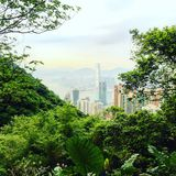 okręgowy pierwszy bay finansowego Kowloon pików lata nad planem czasu Victoria szerszym wiewem świetle rzeczywistego Fotografia Stock