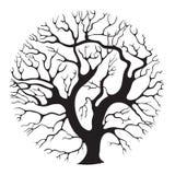 okręgu drzewo ilustracji