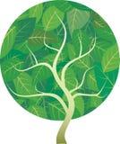 okręgu drzewo ilustracja wektor