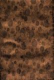 okręgu elipsy złocista owalna tekstura Fotografia Royalty Free