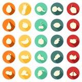 Okręgu mieszkania styl z podcieniowanie owoc - Zupełna ikony kolekcja royalty ilustracja