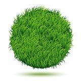Okręgu tło Zielona trawa Zdjęcie Stock