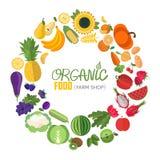Okrąg rama z owoc i warzywo ikonami Fotografia Royalty Free