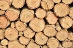 Okręgu wzór drewno Obrazy Stock