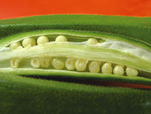 Okra 1 Royalty Free Stock Images