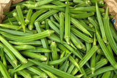 Okra. A close up Okra in a bin Stock Image