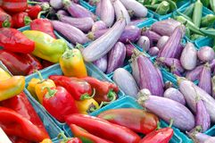 Okra, aubergine, peper stock afbeelding