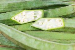 Okra bär frukt Abelmoschus esculentus som isoleras på vita Backgroun Arkivfoton
