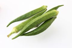 Okra fresh and green, isolated - ladies finger - Abelmoschus esculentus. Fresh okra also called as ladies finger, isolated in white background Stock Image