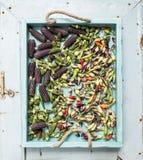 Okra, kryddiga peppar och små svarthavre på det blåa trämagasinet över den ljusa lantliga bakgrunden, bästa sikt Arkivbild