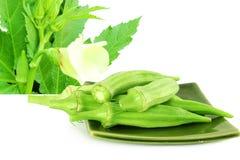 Okra ladyfinger vegetable Royalty Free Stock Photo
