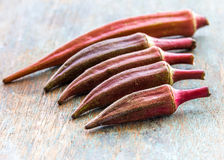 Okra. Red okra on wooden plank. Fresh red okra  ladies' fingers, a popular vegetable of  mallow family Stock Images