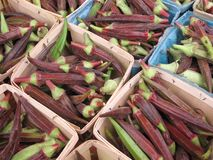Okra for sale at a farmers' market Royalty Free Stock Photo