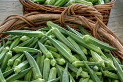 Okra for sale Stock Image