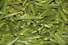 Okra vegetable Stock Photography