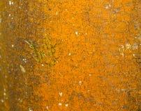 Okropna pomarańczowa butwienie gnicia drewna barkentyny tekstury plama obrazy royalty free