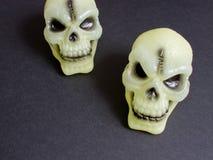 Okropne czaszki Fotografia Stock