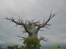 Okropny drzewo, gęsty drzewo Zdjęcia Stock