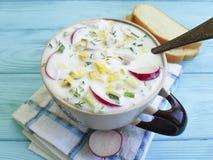Okroshka健康有机酸奶开胃在蓝色木碗土气回锅碎肉食物午餐晚餐夏天混合 库存图片