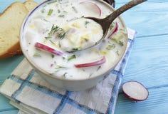 Okroshka健康酸奶开胃在蓝色木碗土气回锅碎肉食物午餐晚餐夏天混合 免版税库存照片