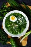 Okroshka русский суп традиционный стоковые изображения