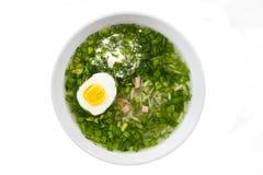 Okroshka русский суп традиционный стоковое изображение