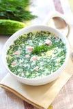 Okroshka - русский холодный суп Стоковые Изображения RF