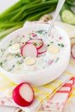 Okroshka - традиционный суп холода лета Стоковое Фото