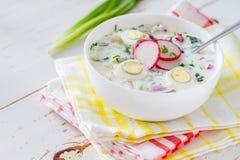 Okroshka - традиционный суп холода лета Стоковое Изображение