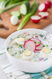 Okroshka - традиционный суп холода лета Стоковые Фото