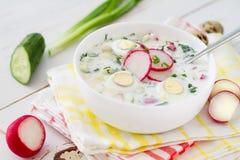 Okroshka - традиционный суп холода лета Стоковое Изображение RF